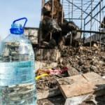 Медведи в центре Томска живут в ужасных условиях